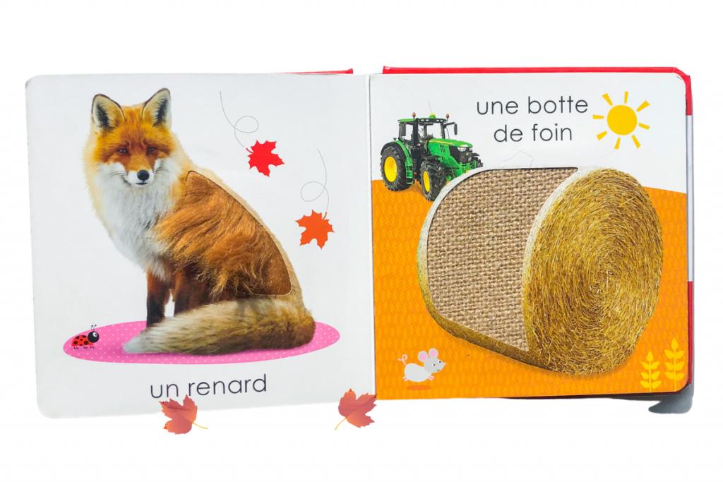 French boooks for kids - Touche à tout : l'Automne
