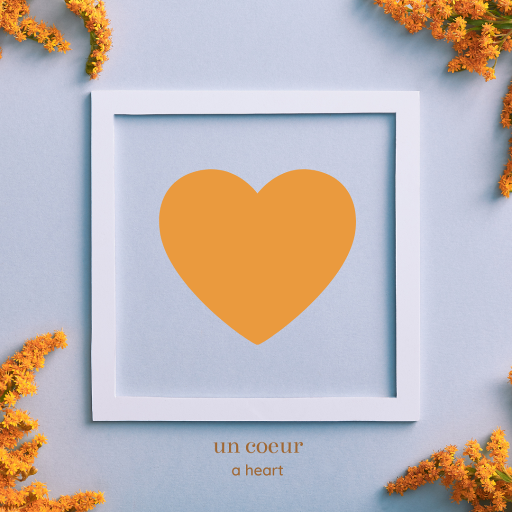 shapes in french - heart