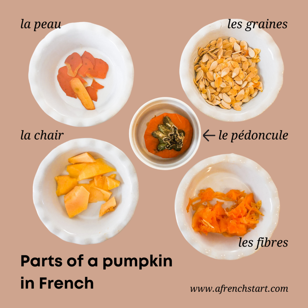 parts of a pumpkin in french
