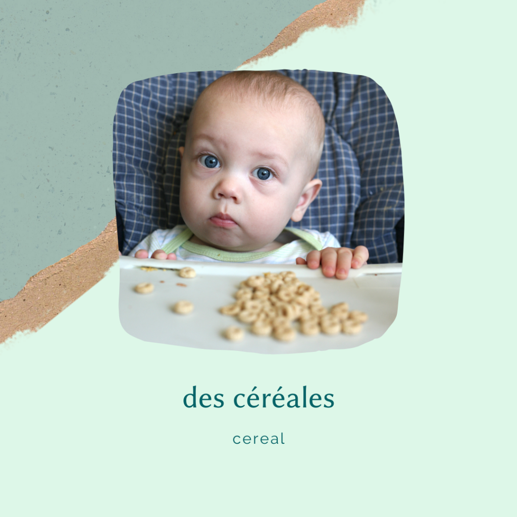 french food vocabulary - pureed cereal