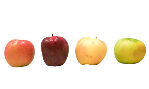 Describing an apple in French – colour, size, and taste