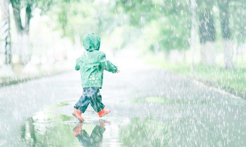 french nursery rhyme main image rain