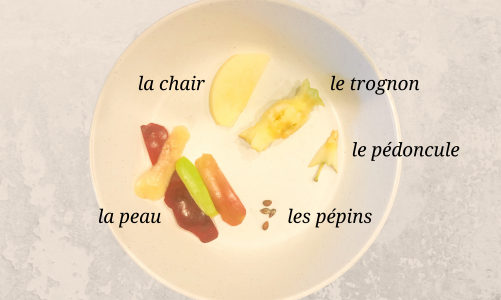parts of an apple in french