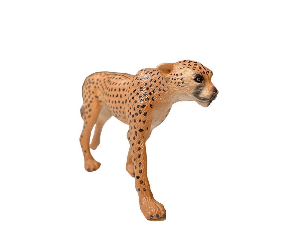 safari animals in french cheetah
