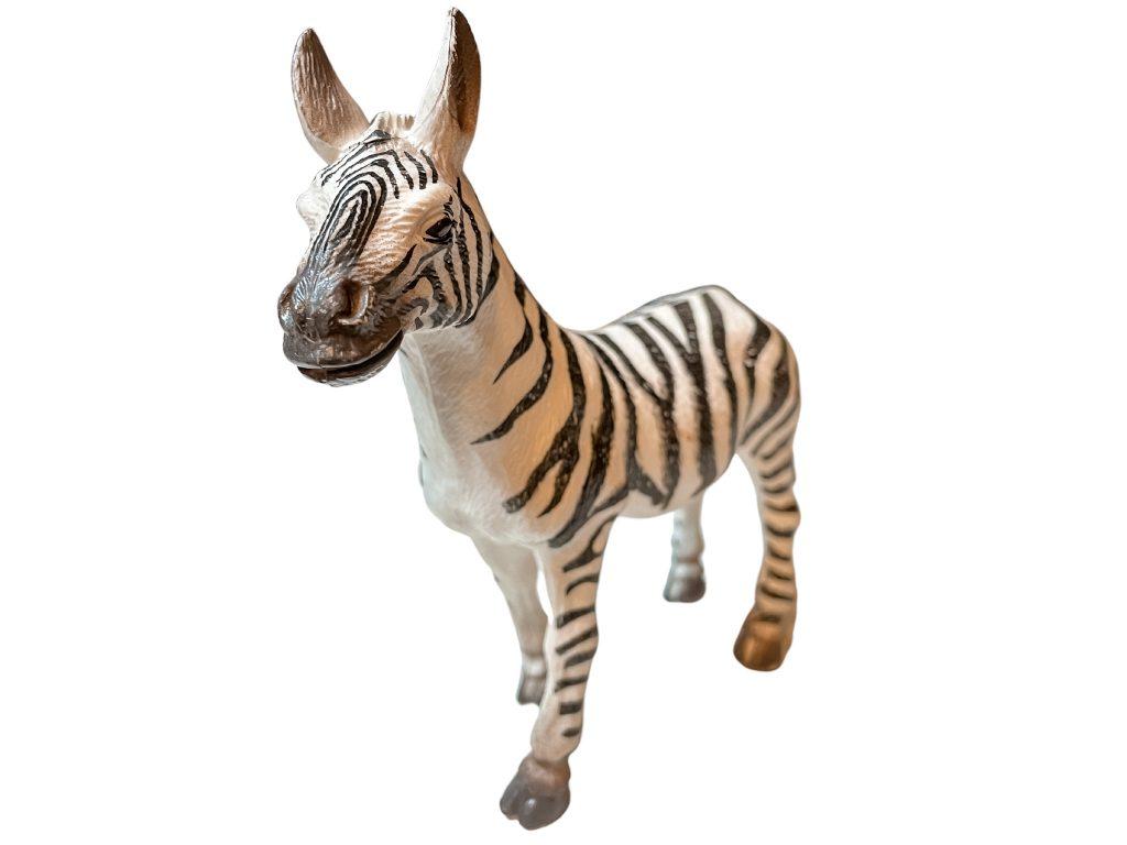 safari animals in french zebra