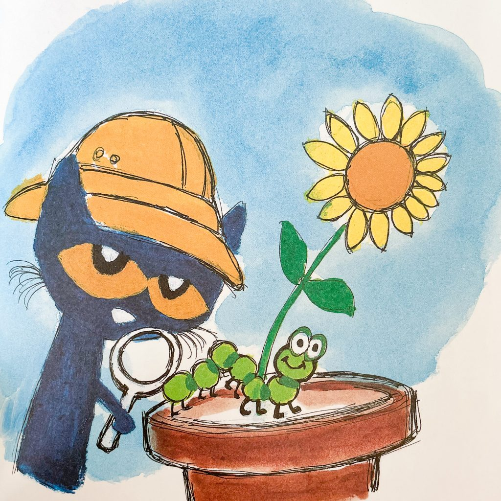 french spring book for kids: pat et la chenille verte